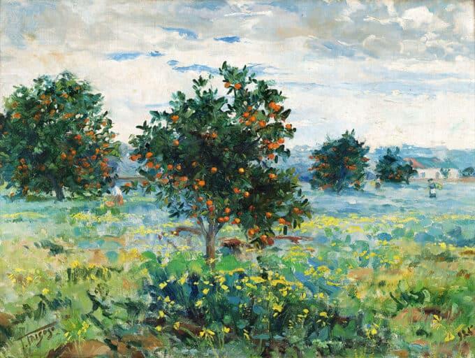 درختان-پرتقال-در-یک-بعدازظهر---فالکو-تریگوزو