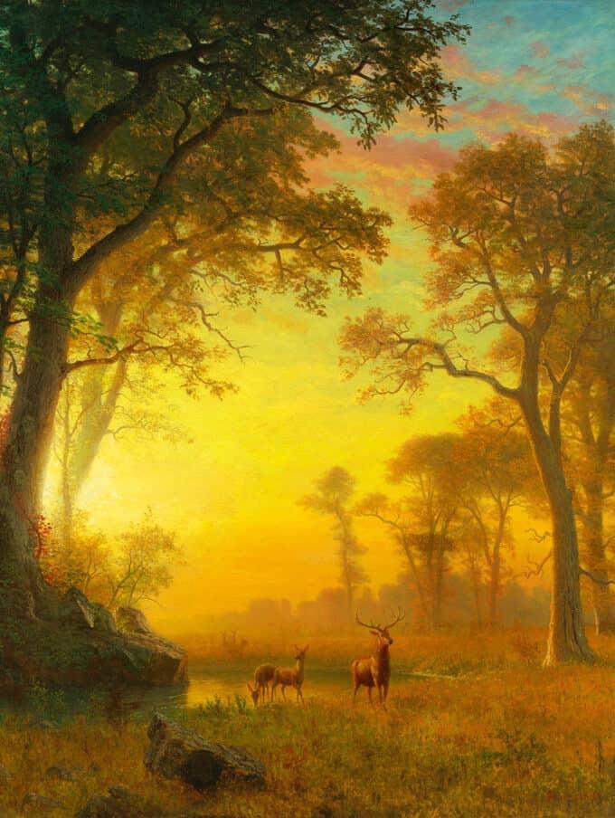 نور-در-جنگل---آلبرت-بیرشتات